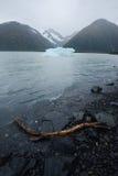 Portage glacier iceberg Stock Photos
