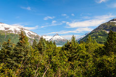 Portage Glacier- Kenai Peninsula- Chugach National Forest- AK Royalty Free Stock Photography