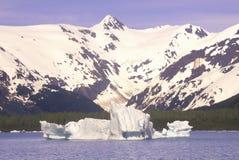 Portagegletsjer en Portage-Meer zoals die van Seward-Weg, Alaska wordt gezien Stock Foto's