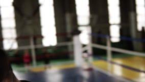 Portait av idrottsmannen som stansar i svarta boxas handskar och allvarligt ser på kameran i idrottshallen Stäng upp trött från stock video