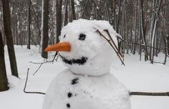 Portait bałwan w zima lesie Obrazy Royalty Free