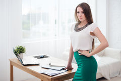 Portait of beautiful successful business woman Royalty Free Stock Photos