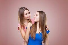 Portait de studio du jeune embrassement jumel de soeurs Image stock