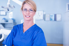 Portait of a dentist smiling at camera Stock Images