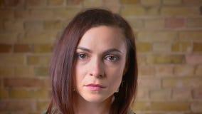 Portait der jungen schönen braun-köpfigen Frau, die mit Konzentration in Kamera bricken aufpasst an, Wandhintergrund stock video footage
