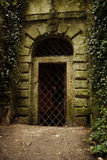 portal Zdjęcie Stock