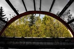 portal Fotografia Royalty Free