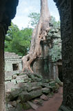 Portal às ruínas de Angkor Foto de Stock Royalty Free