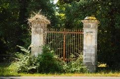 Portal velho coberto com os arbustos Imagens de Stock