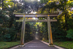 Portal of wood gate temple, Torii of Meiji Jingu Shrine in Centr Royalty Free Stock Photos