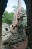Portale alle rovine di Angkor Fotografia Stock Libera da Diritti