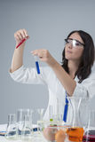 Portarit of Female Laboratory Staff with Two Flasks Samples Stock Image