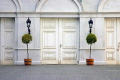 Portas com plantas Foto de Stock Royalty Free