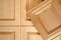Portas de gabinete feito sob encomenda Fotografia de Stock