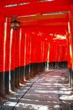 Portas de Torii Fotografia de Stock