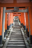 Portas de Torii no Fushimi Inari-taisha Imagens de Stock