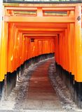 Portas de Torii no santuário de Fushimi Inari Taisha foto de stock royalty free