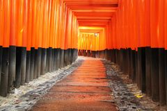 Portas de Torri na entrada do santuário de Fushimi Inari Taisha fotos de stock