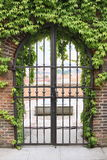 Portas do ferro Imagens de Stock