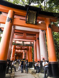 Portas dos toros no santuário de Fushimi Inari Fotos de Stock