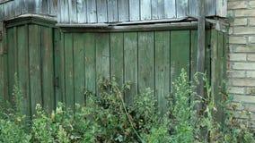 Portas ou wicket fechado, grama-coberto na cerca verde de madeira no campo Porta abandonada Cena rural uninhabited video estoque
