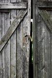 Portas quebrado velhas, imagem preto e branco Foto de Stock Royalty Free