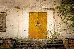 Portas velhas de uma construção abandonada com hera e ervas daninhas fotos de stock