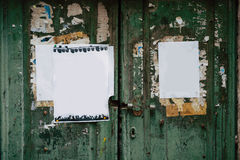 Portas verdes Textura de madeira Pintura gasto, irradiada velha Fotografia de Stock