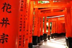 Portas vermelhas Foto de Stock
