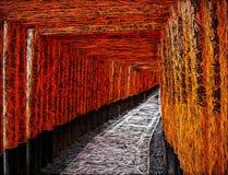 Portas vermelhas do torii da ilustração, Kyoto, Japão ilustração stock