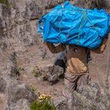 Portatore su Kilimanjaro Immagine Stock Libera da Diritti