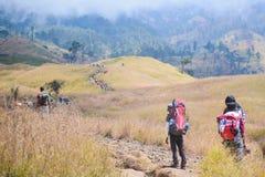 Portatori di Lombok lungo la strada alla cima Fotografie Stock