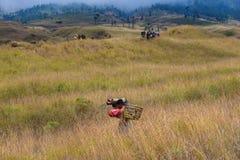 Portatori di Lombok lungo la strada alla cima Fotografia Stock Libera da Diritti