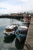 Portavogie Fishing Boats. Fishing boats in the port of Portavogie Northern Ireland Royalty Free Stock Image