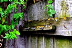 Porte abstraite Images libres de droits