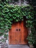 Porte antique complètement des vignes Photos libres de droits