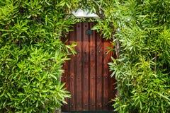 Porte assez en bois entourée par les plantes vertes images libres de droits