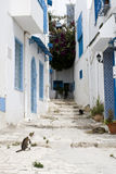 Porte blu, finestra e parete bianca di costruzione in Sidi Bou Said Immagine Stock