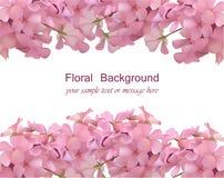 Porte-cartes floral de fleur L'aquarelle sensible d'été de ressort fleurit l'invitation de mariage Place pour le texte Vecteur illustration libre de droits
