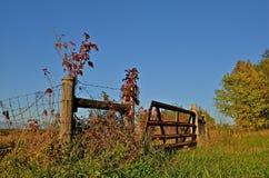 Porte décorée par des couleurs d'automne Image stock