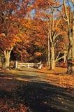 Porte d'automne Image libre de droits