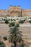 Porte d'or, Jérusalem Photos libres de droits