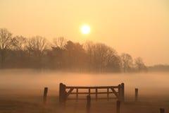 Porte dans le brouillard dans le lever de soleil Images stock
