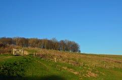 Porte de campagne dans le Sussex, Angleterre photo libre de droits