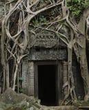 Porte de jungle Photos libres de droits