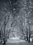 Porte de l'hiver Image stock