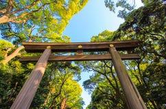 Porte de Torii le long de l'approche boisée à Meiji Shrine, Shibuya, Tokyo, Japon photographie stock