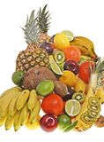 Porte des fruits 01R1 Images stock