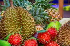 porte des fruits on photographie stock