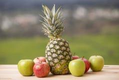 Porte des fruits extérieur image libre de droits